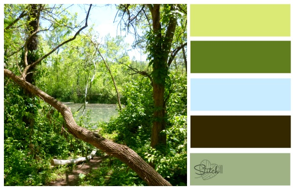Natures Color Combo swamp
