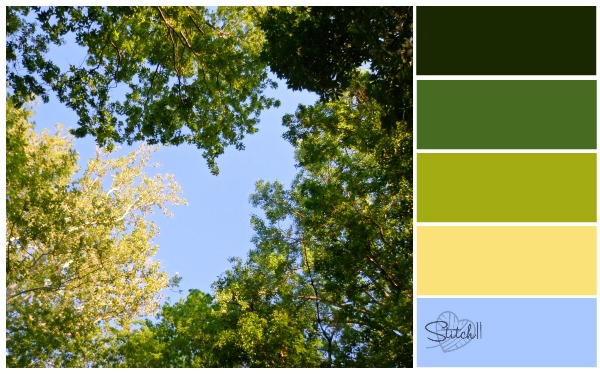 Natures Colors - Look up!