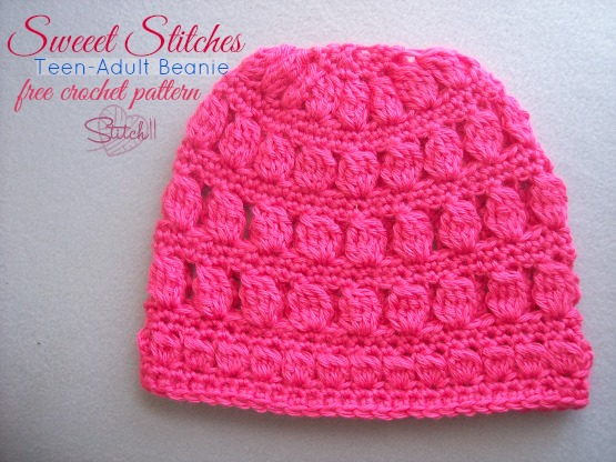 Sweet Stitches Teenadult Beanie Stitch11