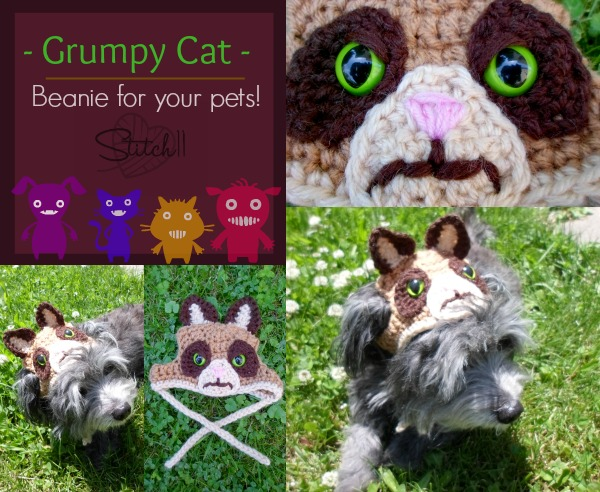 Grumpy-Cat-Beanie-For-Your-Pets