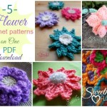 5 flower patterns on ONE PDF download